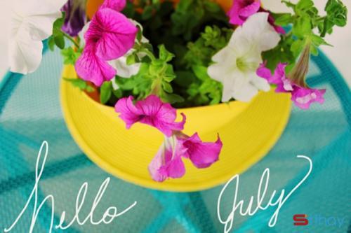Status tháng 7 Khởi đầu tháng bảy như trang giấy trắng theo thời gian được cái nắng làm vàng úa