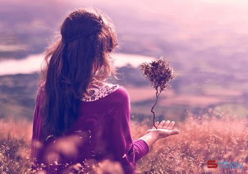 Stt đâu phải cứ yêu là hạnh phúc, yêu đôi lúc lại tự mang sự cô đơn cho mình