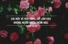 Những câu nói hay nhất về những đoá hoa hồng có gai