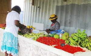 Fresh local produce is sold at the Jackson Farm stand on St. Croix (Bill Kossler photo)