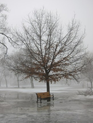 It's quiet.... too quiet. (Coronation Park, Oakville)