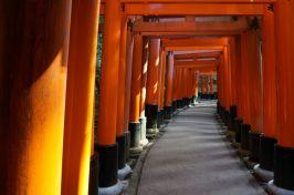 Torii at Fushimi-Inara Taisha