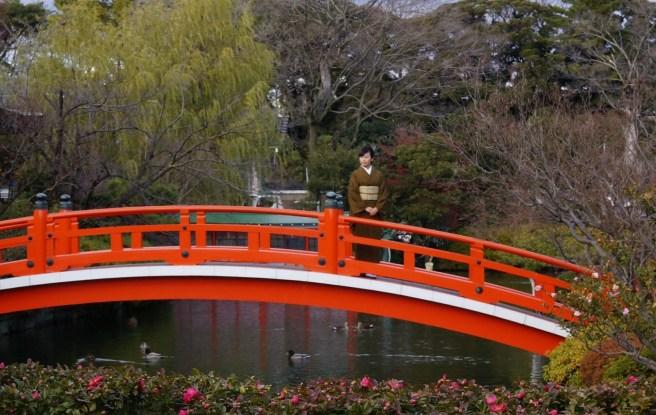 Pretty bridge and pretty girl in a pretty park