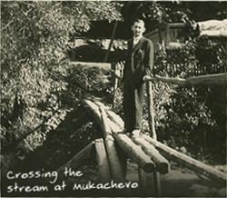 Crossing-StreamMukachevo
