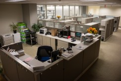 Theme Reception and Cubicle Area