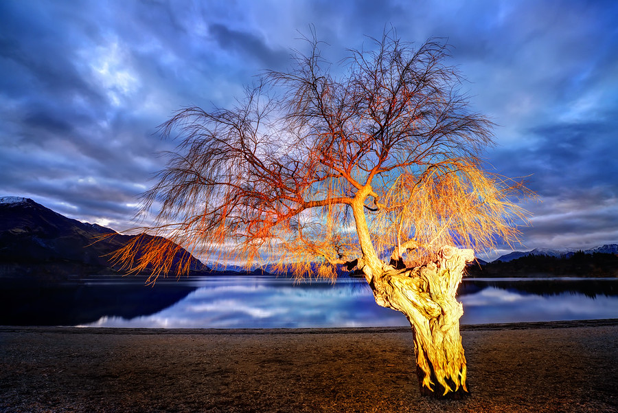 Lonely Tree Aflame After having a great flat white with Tim and Bel, Abe (my intern for the winter/summer) and I went down to the lake. I picked out some trees I wanted to re-visit in the evening light. As I was driving around, I got an idea… it was dark and blue and I thought about what it would look like if the tree was instantly on fire… so I gave Abe some specific instructions and a secret signal.I set up for the shot with the 14-24mm, prepared the timer, then made the secret signal to Abe. We gave it a few different tries until I felt like we had it right before driving back home over the crown range in the dark.- Trey RatcliffClick here to read the rest at the Stuck in Customs blog.