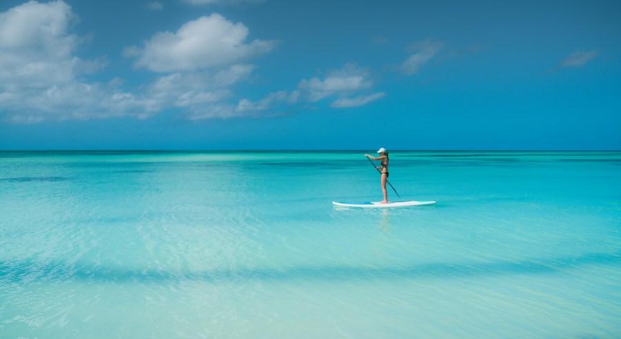Paddleboarding In Aruba