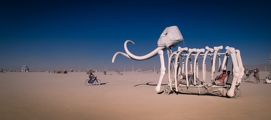 Burning Man Photo