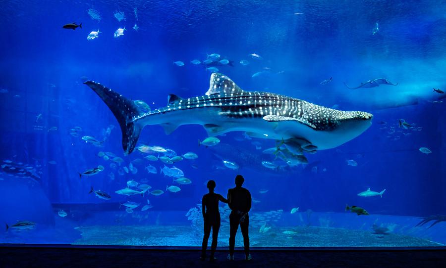 Copyright Trey Ratcliff www.StuckInCustoms.com
