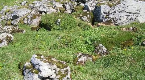 Lair of the fox - an Icelandic saying states that a fox always has many ways out.