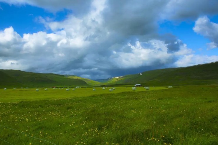Kollafjörður