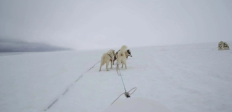 The Iceland dog-sledding video is pretty awesome.