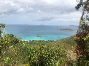 Top 5 Things to Do in Saint Thomas