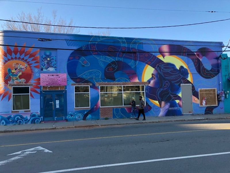 mural of woman with abstract snakes in NODA