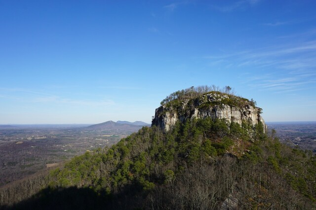 pilot knob on top of mountain surrounded by trees