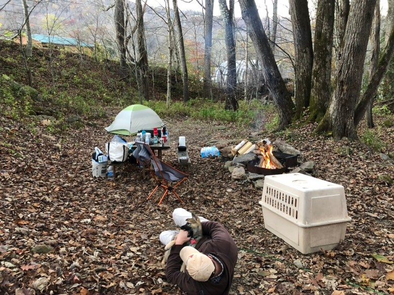 Man laying on the ground with a puppy surrounded by camping gear for dogs and humans.