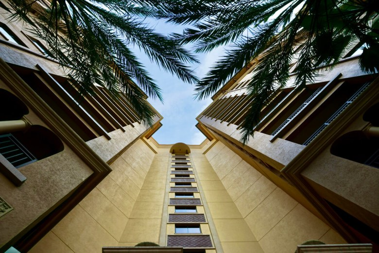 Building side with palm trees in the foreground