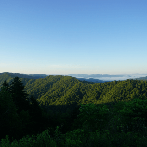 How to Spend a Weekend in Asheville, NC