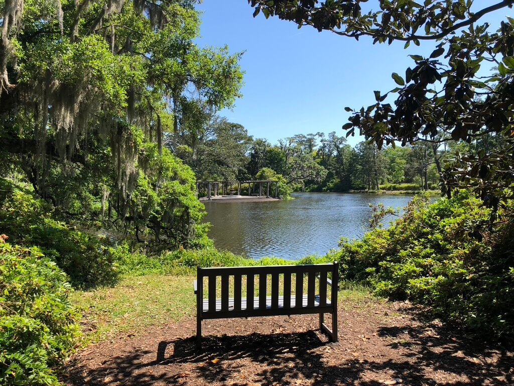 bench in front of pond