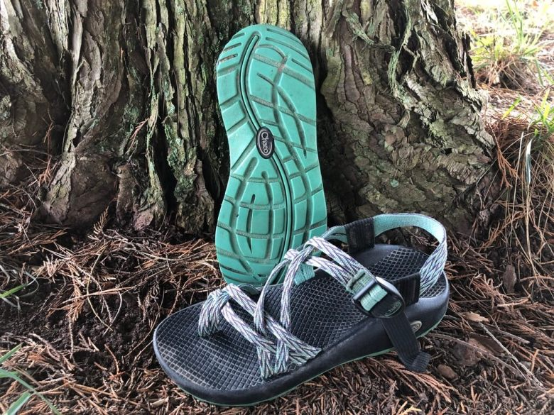 chacos in front of tree