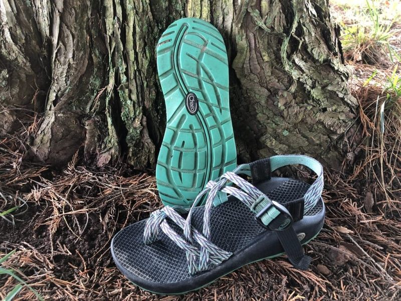 chaco sandals against a tree