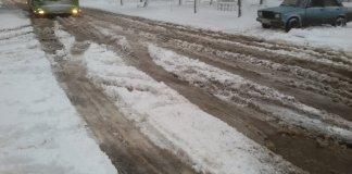 Непогода в Харькове не стихает: город засыпает снегом, некоторые дороги завалены ветвями 1