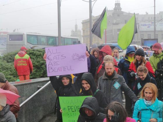 В Харькове митинговали за права животных 1