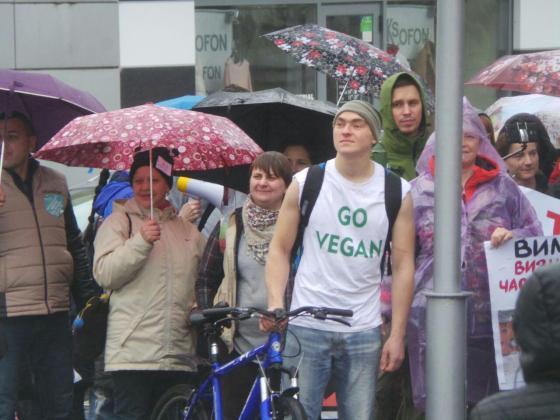 В Харькове митинговали за права животных 9