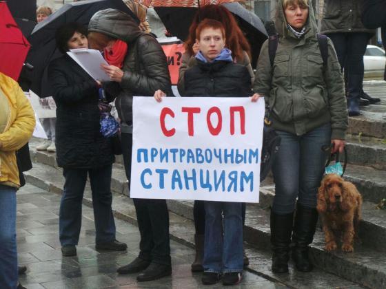 В Харькове митинговали за права животных 14