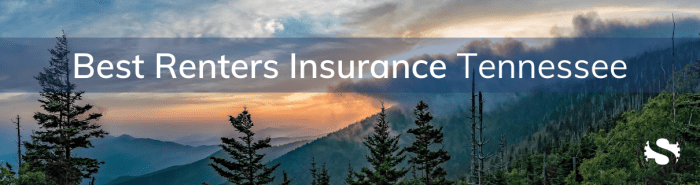 Tennessee Renters Insurance, Renters Insurance Tennessee, Renters Insurance In Tennessee, TN Renters Insurance, Renters Insurance TN