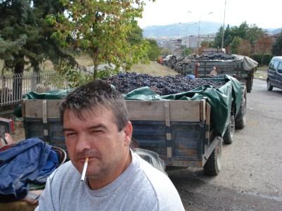 Neoliberalism Illustrated: Privatisation in the Republic of Macedonia's Tikveš Wine Region