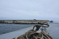 Coming up to Brownsman Island