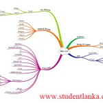 Mind maps for study, memory and to plan your activities