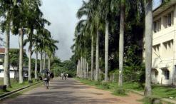 University sri Jayewardenepura