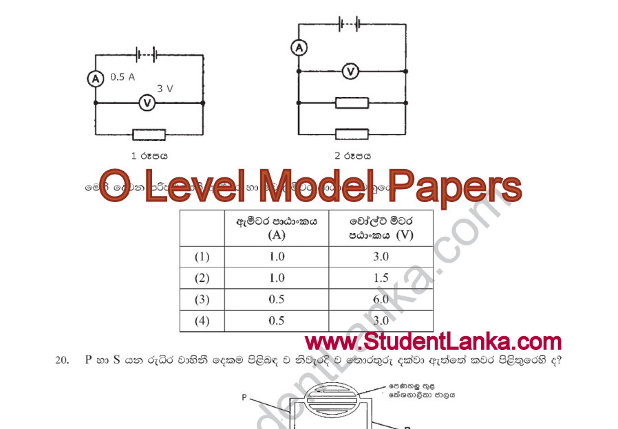 Download Model Papers For O Level Examination 2016 Science