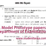 AL Model Prototype Papers by examination department