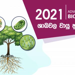 2021 a l biology
