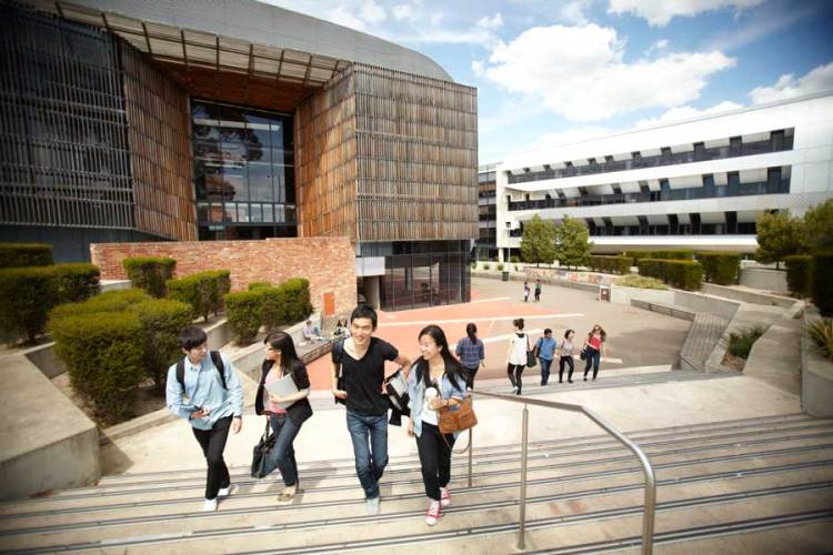University and Primary School is Ideal Partnership