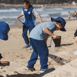 Taking Action in the War Against Waste