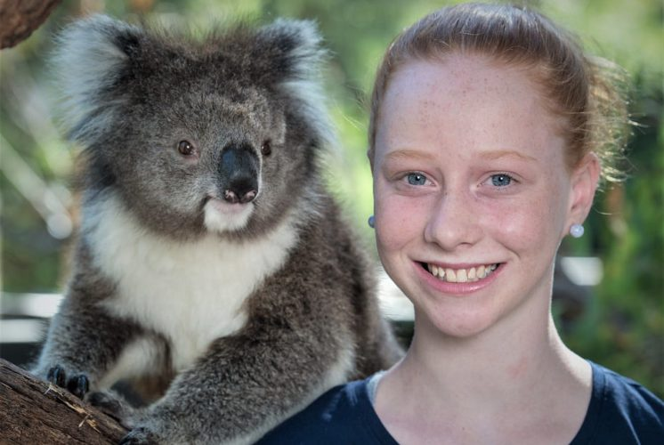 Libby's Koala and Wildlife Crusade