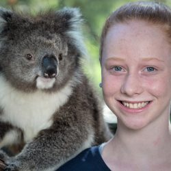 Libby's Koala and Wildlife Crusade