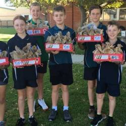 Anzac Spirit and Anzac Biscuits