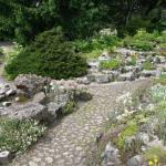 Ботанический сад в Познани