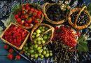 Ягодный сезон в Польше — выжмите все соки