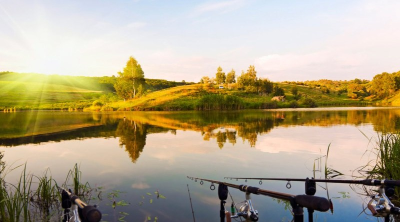 Ловим хищника на мазурских озёрах