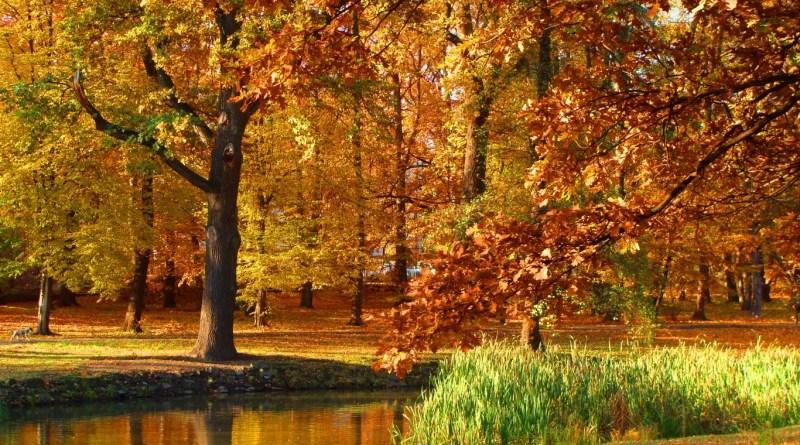 Осенняя пора в Польше: отголоски древних славян