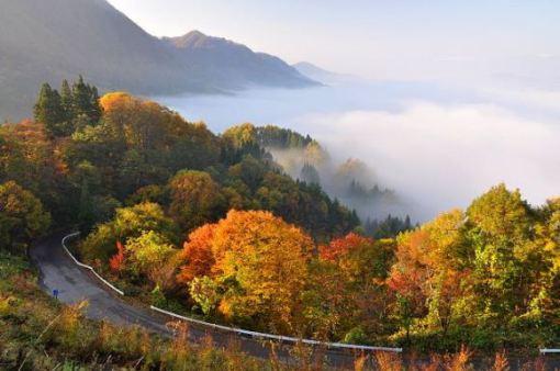 chuubu - Nagano-ken, Kinasa