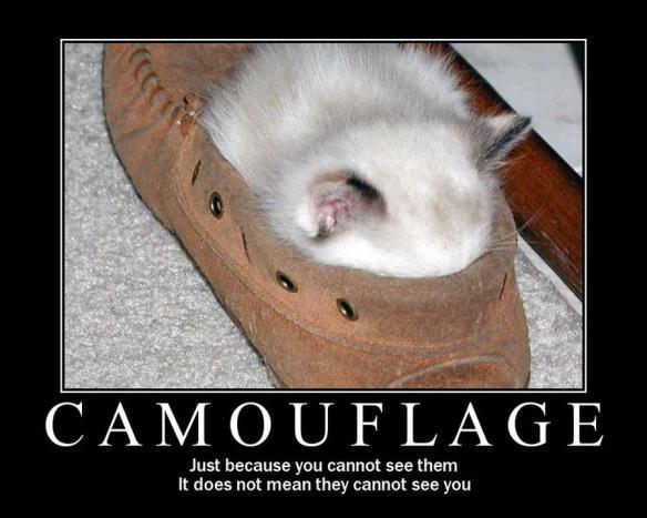camouflage - atama kakushite shiri kakusazu