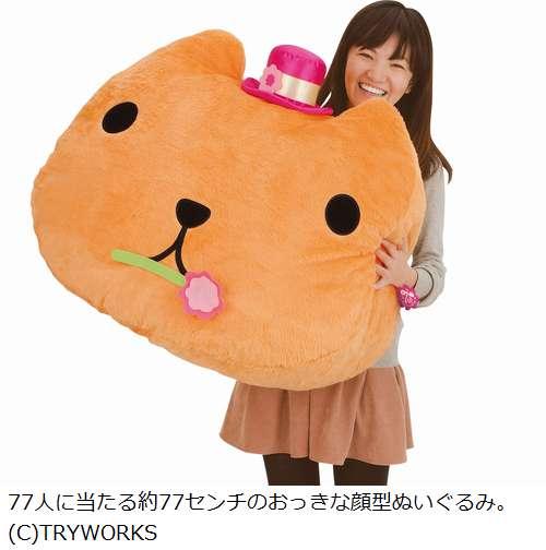 Kapibara-san Capibara goods (25)