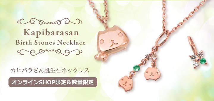 Kapibara-san Capibara goods (29)